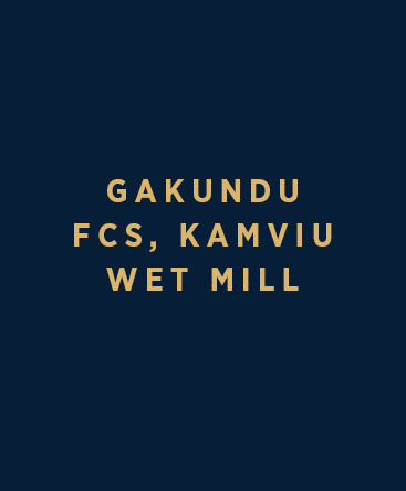 Gakundu FCS – Kamviu Wet Mill
