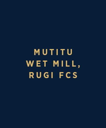 Mutitu Wet Mill (Rugi FCS)