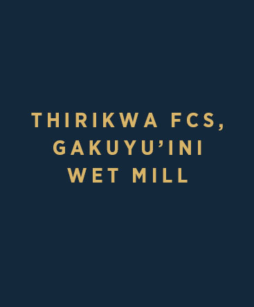 Thirikwa FCS – Gakuyu'ini Wet Mill