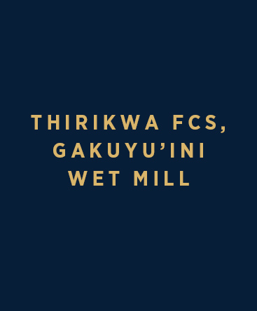 Thirikwa FCS – Gakuyu'ini Wet Mill