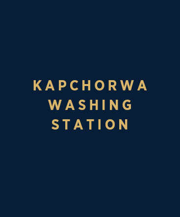 Kapchorwa Washing Station