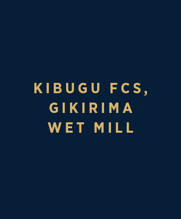 Kibugu FCS – Gikirima Wet Mill