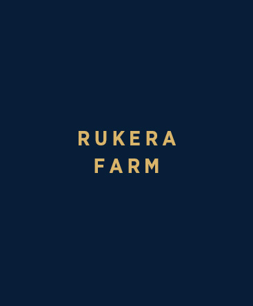 Coffee Research Institute – Rukera Farm
